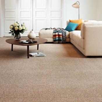 Carpet Marathon